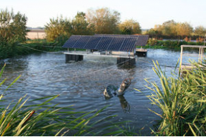 Surface aerator for wastewater treatment floating for Aireadores para estanques piscicolas